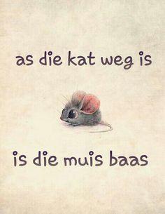 Afrikaanse Idiome & Uitdrukkings - As die kat weg is, is muis baas. #Afrikaans