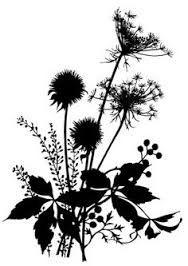 wildflower silhouette - Google Search