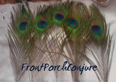 "You will receive 5 peacock feathers. They are aprox. 8-10"" long. Would be perfect for any spirit bottle or dolls. Oshun's number is 5 who is often associated with peacocks. Each feather varies in size aprox. 1/4"" inch give or take. No feather is exactly alike. The feathers you will receive are the ones in the photos.   $4.00"
