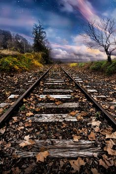 "Tracks. Night Moves. ""working on some night moves."" Segar. Photo by Todd Wall. Source 500px.com"