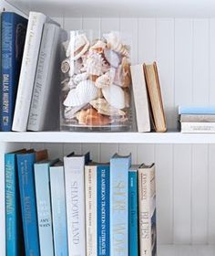 Fill a vase with seashells and display them on a bookcase.