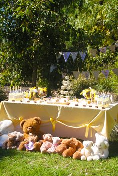 "Photo 33 of 36: Teddy Bear Picnic / Birthday ""Teddy Bear Picnic"" 