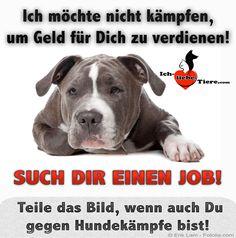 Ich möchte nicht kämpfen, um Geld für Dich zu verdienen! Such Dir einen Job! >> http://www.ich-liebe-tiere.com/ <<