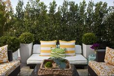 Outdoor room - Mix of plain white fabric & colorful funky fabric, Large planters with shrubs, Centerpiece