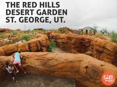 The Red Hills Desert Garden | St. George | The Salt Project | Things to do in Utah with kids