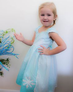 Avery Disney Frozen Elsa Inspired Practical Princess Dress Up and Play Outfit