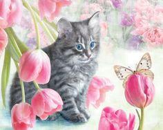Cats and Tulips - Flowers Wallpaper ID 1949931 - Desktop Nexus Nature