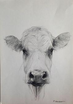 Mucca Portret krowy Cow portrait A3