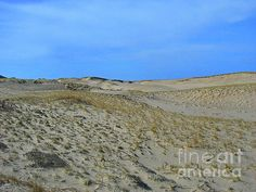 Cape Cod Dunes, MA, USA