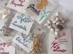 Come creare delle bustine porta semi