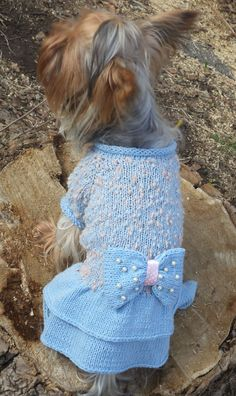 dog clothes/dog clothing/dog sweater/pet clothes/pet clothing/dog sweaters/puppy sweater/girl dog clothes/clothes for dogs/ одежда для собак by LyudmilaHandmade on Etsy https://www.etsy.com/listing/229859479/dog-clothesdog-clothingdog-sweaterpet