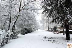 @Apartamentos Ezcaray con nieve