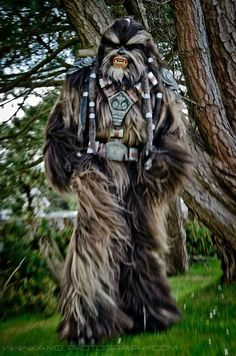 Tarfful, Wookie, Star Wars, by Plaigeous, photo by Kamil Krawczak.