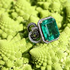 A 8.32-carat emerald Sarpa ring by AENEA. The shank is formed of diamond-set (0.83 carats) snakes and made of platinum, black rhodium-plated silver and yellow gold. Resting on a lime green broccoli head in the sunny and blue skied Salzburg, Austria. See the fashion forward brand: http://www.thejewelleryeditor.com/jewellery/article/aenea-jewellery-austria-salzburg/ #jewelry