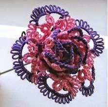 [Rose+(2+colour).jpg]