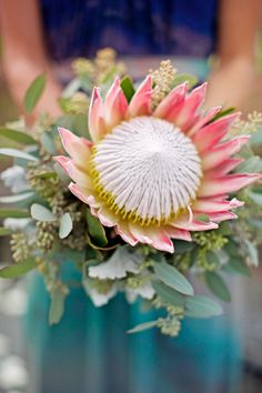 A single bloom bouquet is a cool idea because it's affordable, it reflects the minimalist trend and looks original! Such a bouquet is an interesting idea for a bride, and I think, the best idea for the bridesmaids – it will save you lots of money! Protea Wedding, Fall Wedding Flowers, Wedding Flower Inspiration, Wedding Bouquets, Wedding Ideas, Fall Flowers, Flor Protea, Protea Bouquet, Protea Flower