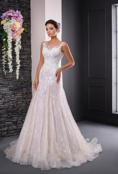 Soft elegant and flowing trumpet style wedding gown, with low open back, soft tulle skirt with scattered lace detail and lace bodice. Perfect for the bride looking for that something special. Lace Bodice, Lace Sleeves, Lace Mermaid, Bride Look, Lace Detail, One Shoulder Wedding Dress, Wedding Gowns, Ball Gowns, Tulle