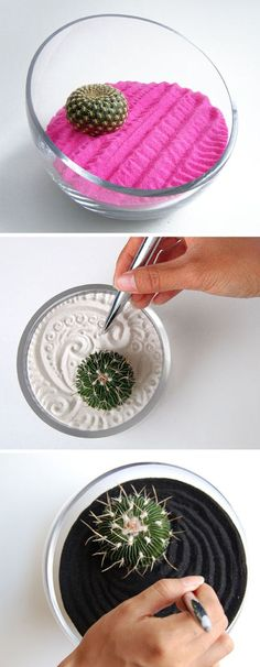 Mini Zen Garden (cool idea I wonder if it can be translated to a DIY proj)