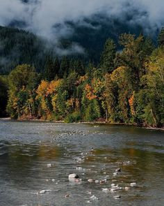 Reposting @xjjon: Morning fall scene on the Skykomish River as early autumn starts to torch the tips of the trees. It was peacefully quiet that morning as the clouds and fog that covered the sky that night parted and let the sun shine through. Early morning is one of the best times to be out and about, especially when the world's still sleeping.  . . #washington #landscape #photography #beautiful #mountains #beautifuldestinations #picoftheday #tbt #travel #ourplanetdaily #backpacking