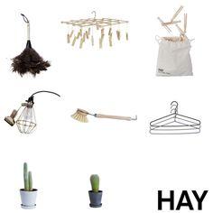 hay - pino