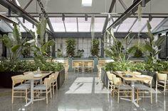 Café in Abbotsford, Melbourne by Mim Design Mim Design, Cafe Design, Interior Design, Store Design, Cafe Restaurant, Restaurant Design, Melbourne Cafe, Melbourne Australia, Vacation Home Rentals