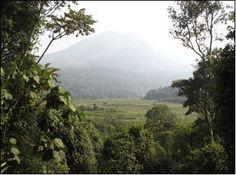 kahuzi-biega national park, democratic republic of congo