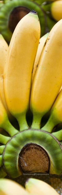 Bananas in Fashion – Fruit Medley Horn Of Plenty, Theme Pictures, Make All, Fruits And Vegetables, Peach, Tropical, Bananas, Entertainment, Magazine