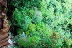 Rappelling in Belize