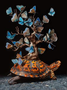 Lisa Ericson Imagines Fantastical Ecosystems Carried on the Backs of Turtles | Colossal