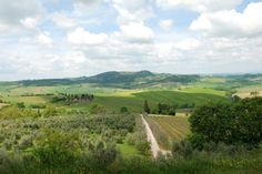 Poor Girl Gourmet: Introducing Tiny Farmhouse Tours: Culinary Tours in Italy