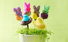 Happy #Easter! Make These Adorable #Peeps Pops for Easter! http://parade.condenast.com/272883/dash/peep-trick-make-these-adorable-peeps-pops-for-easter/