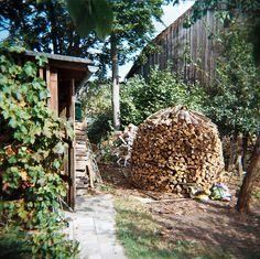 Firewood by Christine Spetzler