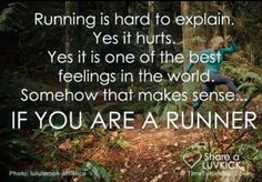 it hurts. it kills. it makes you feel like you can't take another step. but you take another step. you keep going. you run through anything and everything. that's what running is about.