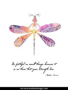Quotes about Dragonflies (66 quotes)