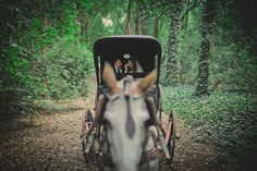 Bride and groom in a charriot in the middle of the woods. Estancia La Candelaria, Lobos