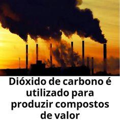 """Este é um projeto que foca na biorrefinaria ou seja a conversão de biomassa em combustíveis. """"A ideia central é pegar o CO2 e por um processo simples e ecológico - no sentido de não demandar nem grandes consumos de energia nem emissão de outros poluentes na atmosfera - tentar convertê-lo em metanol através de um processo biocatalítico (que utiliza enzimas para realizar reações químicas). As enzimas reagem com CO2 e introduzem determinados grupos químicos permitindo que o dióxido de carbono…"""