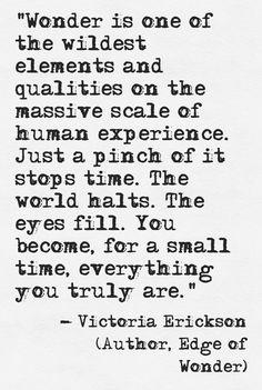 Victoria Erickson (facebook: Victoria Erickson, writer)