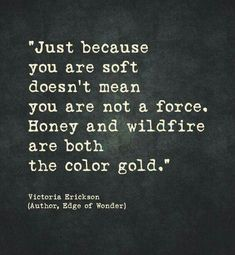 Reminder that you can be both soft and fierce as fuck. I'm wholehearted, darlin but don't think I won't go rounds and win every. Great Quotes, Quotes To Live By, Inspirational Quotes, Motivational, The Words, Pretty Words, Beautiful Words, Words Quotes, Me Quotes