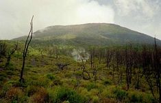 Virunga Mountain: Mount Nyiragongo, Democratic Republic of the Congo Parc National, National Parks, Mount Nyiragongo, Congo Kinshasa, Africa Art, Travel Design, Africa Travel, Republic Of The Congo, Holiday Travel