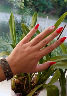 Nails paznokcie czerwone śliczne frencz eleganckie