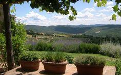 View of the Day! #LaLocanda #Tuscany luxurylet.com/... #LuxuryTravel #Italy #Chianti #Italian #Countryside  #WineRegion #Wine #Region #Vineyards #Olives #OliveGroves #Woodland #Luxury #BoutiqueHotel #Boutique #Hotel #16th #Century #Farm #View