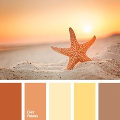 Color Palette #3817