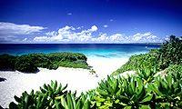 I want to go to Okinawa, Japan.
