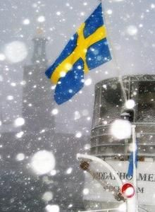flag of sweden in sverige - winter boat tour Swedish Girls, Swedish Style, Sweden Flag, Kingdom Of Sweden, About Sweden, Scandinavian Countries, Flags Of The World, Boat Tours, My Heritage