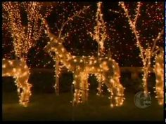 Watch a very special FYI Philly Holiday Edition from @Peddler's Village.