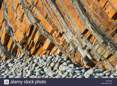 Sandstone Cliffs At Sandy Mouth Near Bude, Cornwall, Uk Stock Photo, Royalty…