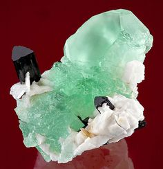 Rich green, satiny Fluorite on snow-white Albite & terminated Schorl, from Nagar, Gilgit, Northen Areas of Pakistan Minerals And Gemstones, Crystals Minerals, Rocks And Minerals, Stones And Crystals, Healing Crystals, Crystal Castle, Mineralogy, Beautiful Rocks, Mineral Stone