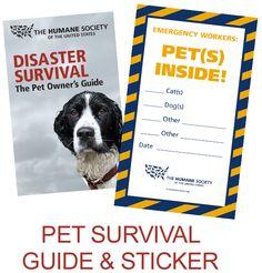 Pet Disaster-Preparedness Kit Quiz - The Humane Society of the United States