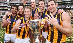 Hawks stars enjoy four-flag photo Aussie Memes, Australian Football League, Flag Photo, Most Beautiful People, Winter Sports, Football Team, Hawks, Club, John Smith