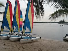 Sailing at Club Med Sandpiper Bay.